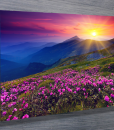 Pink-Fields-landscape-wall-art-canvas