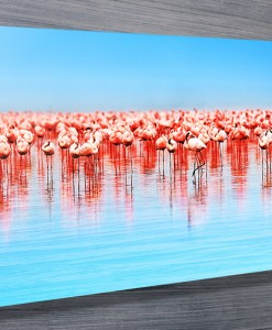 Pink-Flamingos-Canvas-Wall-Art