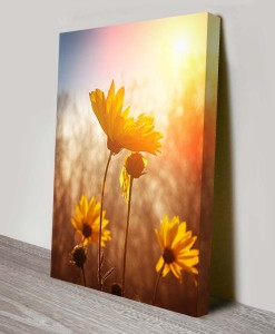 Sunset-Floral-Art Canvas Print