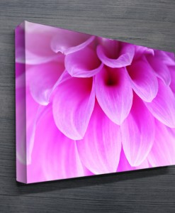 Ethereal Petals Abstract Wall Art