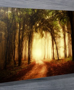 Mystical Woods  Landscape Wall Art