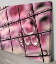 Pink grid-bubbles-Abstract Art Canvas Print