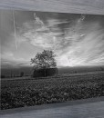 field-and-barn-canvas-print