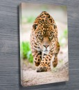 Hunting-Jaguar-wall-art-canvas-print