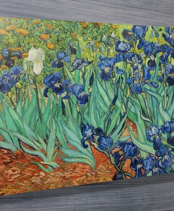 Irises-by-Van-Gogh-Canvas-Print-Australia