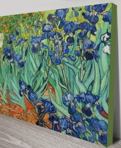 Irises-by-Vincent-Van-Gogh
